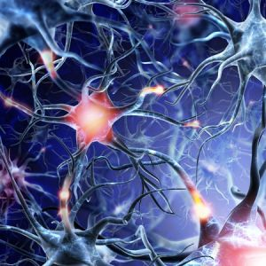 Bild: Magnesiumcitrat stärkt das Nervensytem